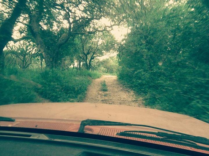 camino-del-rincon