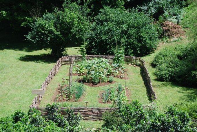 Huerta-organica.jpg