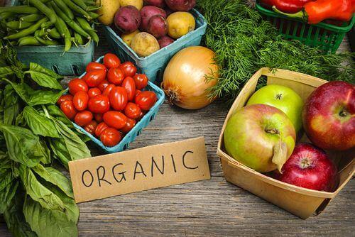 organic-food1