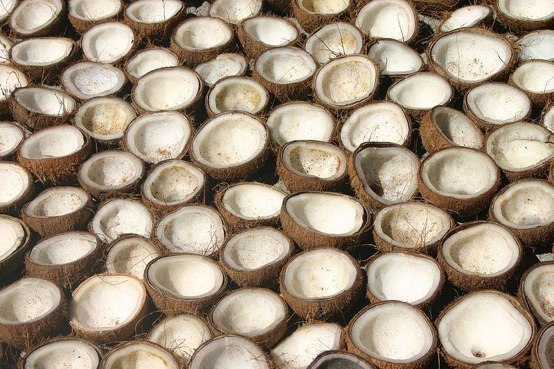 cocos-secándose-copra