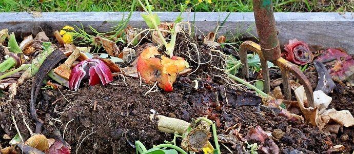 Cómo prepara tu propio compost.